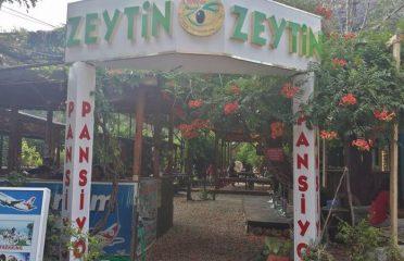 Olimpos Zeytin Pansiyon
