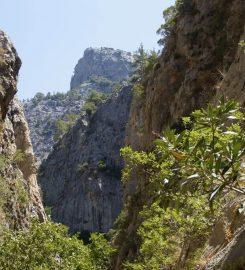 Sapadere Kanyonu Kamp Alanı