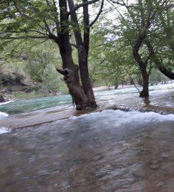 Üzümdere Milli Parkı Kamp Alanı
