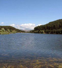 Çamkoru Tabiat Parkı Bungalov Evleri